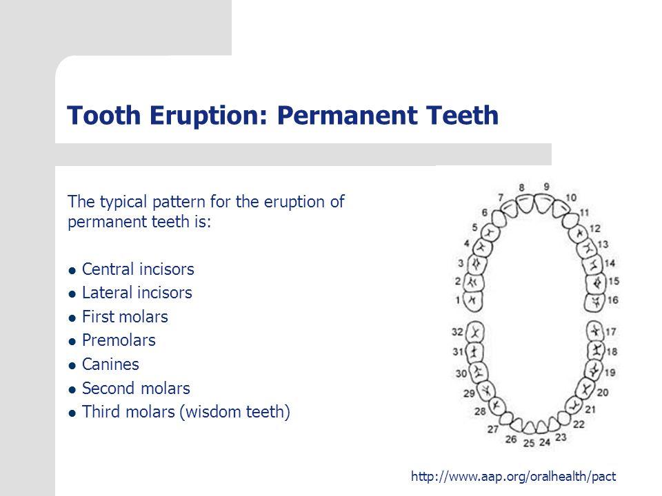 http://www.aap.org/oralhealth/pact Natal and Neonatal Teeth Some infants erupt teeth before birth (natal teeth) or shortly thereafter (neonatal teeth).