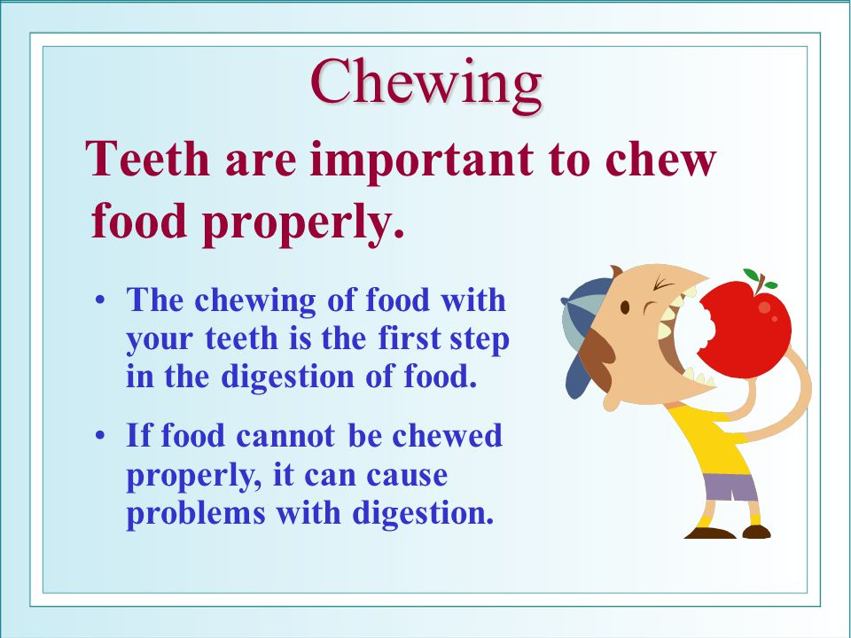 Chewing Teeth are important to chew food properly. The chewing of food with your teeth is the first step in the digestion of food. If food cannot be c