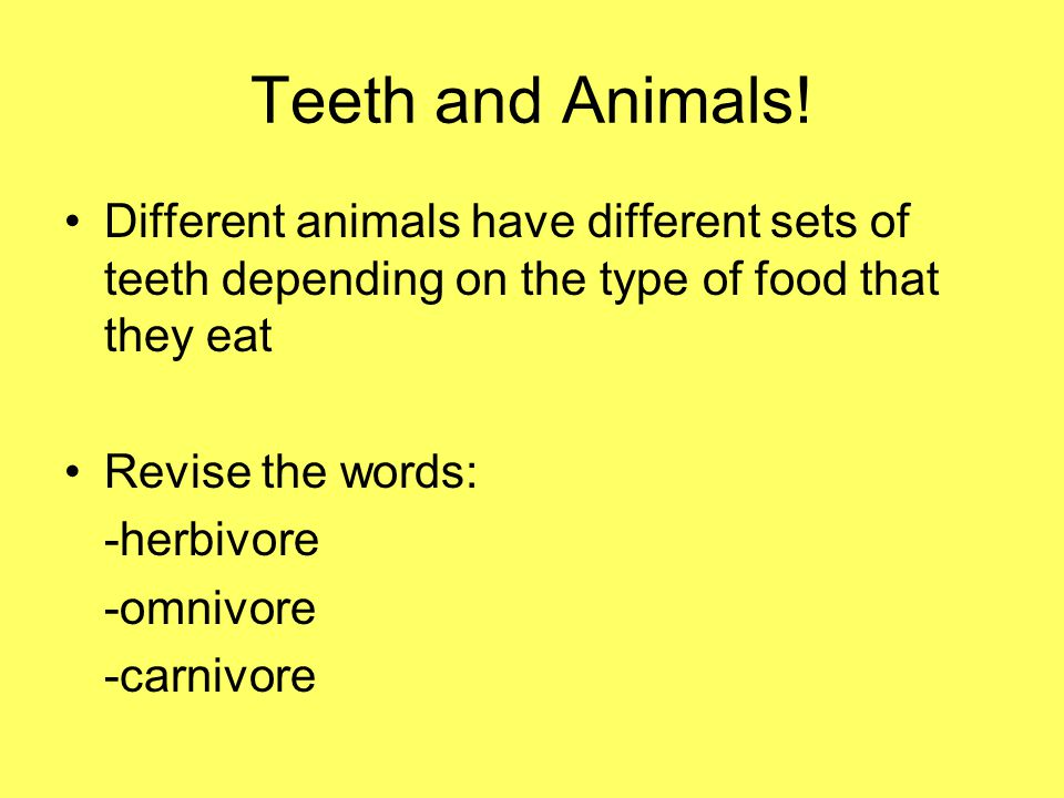Think….Do you think a herbivore will a different set of teeth compared to a carnivore.