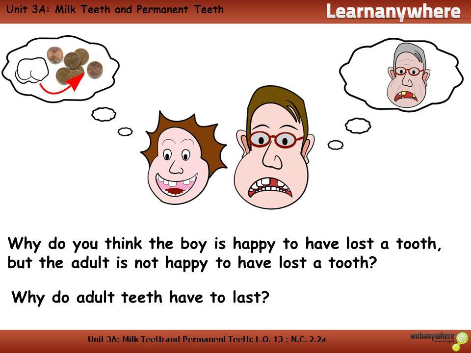 Unit 3A: Milk Teeth and Permanent Teeth: L.O. 13 : N.C.