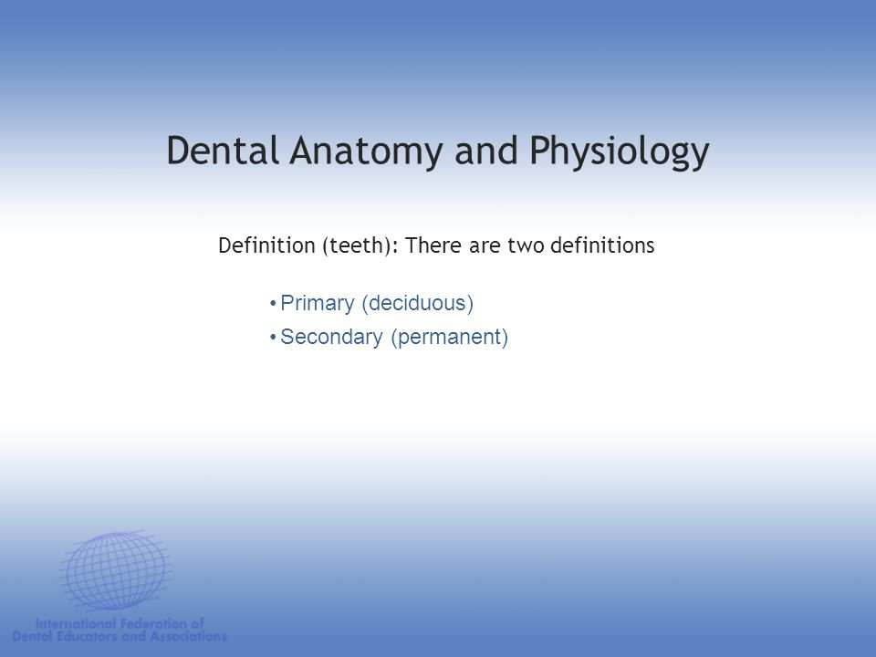 Dental Anatomy and Physiology A tooth is made up of three elements: Water Organic materials Inorganic materials Elements