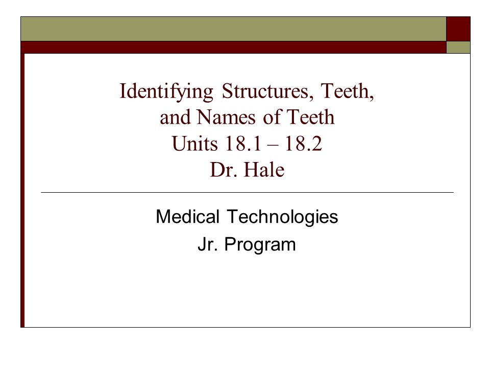 Identifying Structures, Teeth, and Names of Teeth Units 18.1 – 18.2 Dr. Hale Medical Technologies Jr. Program