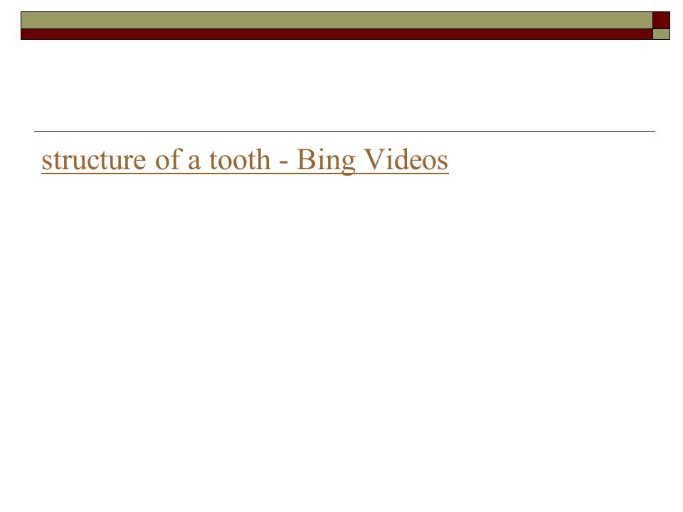 structure of a tooth - Bing Videos