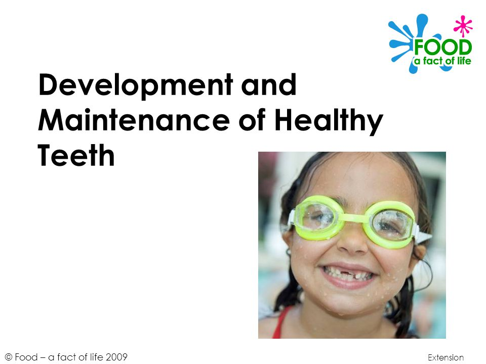 © Food – a fact of life 2009 Development and Maintenance of Healthy Teeth Extension