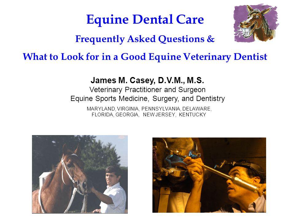 MARYLAND, VIRGINIA, PENNSYLVANIA, DELAWARE, FLORIDA, GEORGIA, NEW JERSEY, KENTUCKY James M. Casey, D.V.M., M.S. Veterinary Practitioner and Surgeon Eq