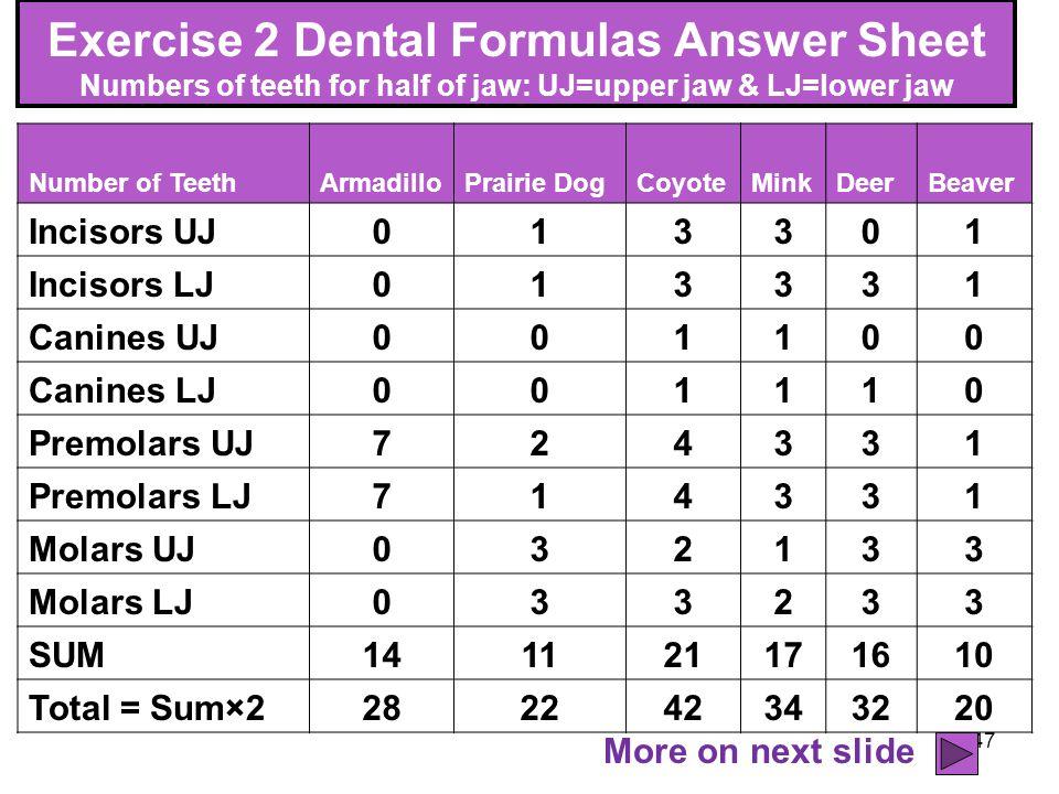 47 Exercise 2 Dental Formulas Answer Sheet Numbers of teeth for half of jaw: UJ=upper jaw & LJ=lower jaw Number of TeethArmadilloPrairie DogCoyoteMink