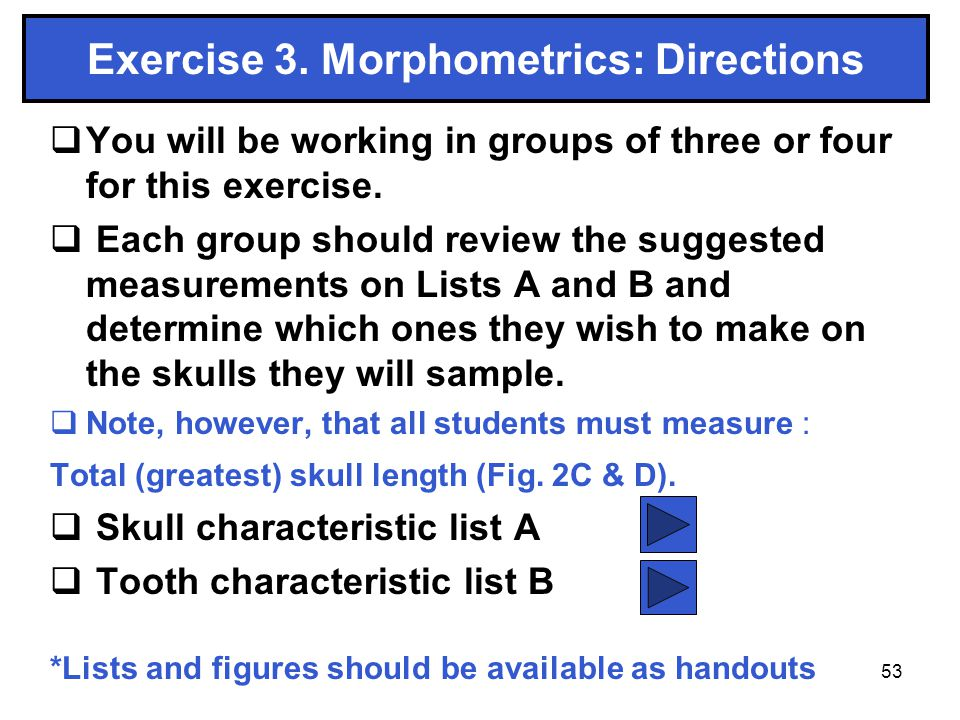 53 Exercise 3. Morphometrics: Directions You will be working in groups of three or four for this exercise. Each group should review the suggested meas