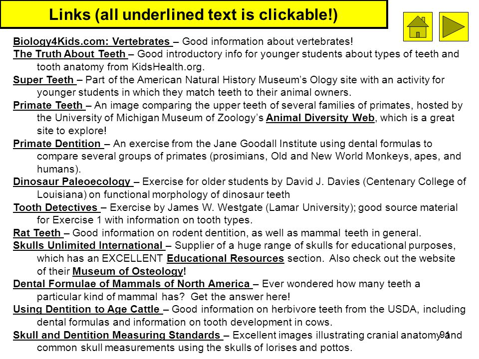 91 Links (all underlined text is clickable!) Biology4Kids.com: Vertebrates Biology4Kids.com: Vertebrates – Good information about vertebrates! The Tru