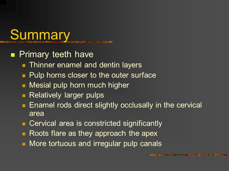 Summary Primary teeth have Thinner enamel and dentin layers Pulp horns closer to the outer surface Mesial pulp horn much higher Relatively larger pulp