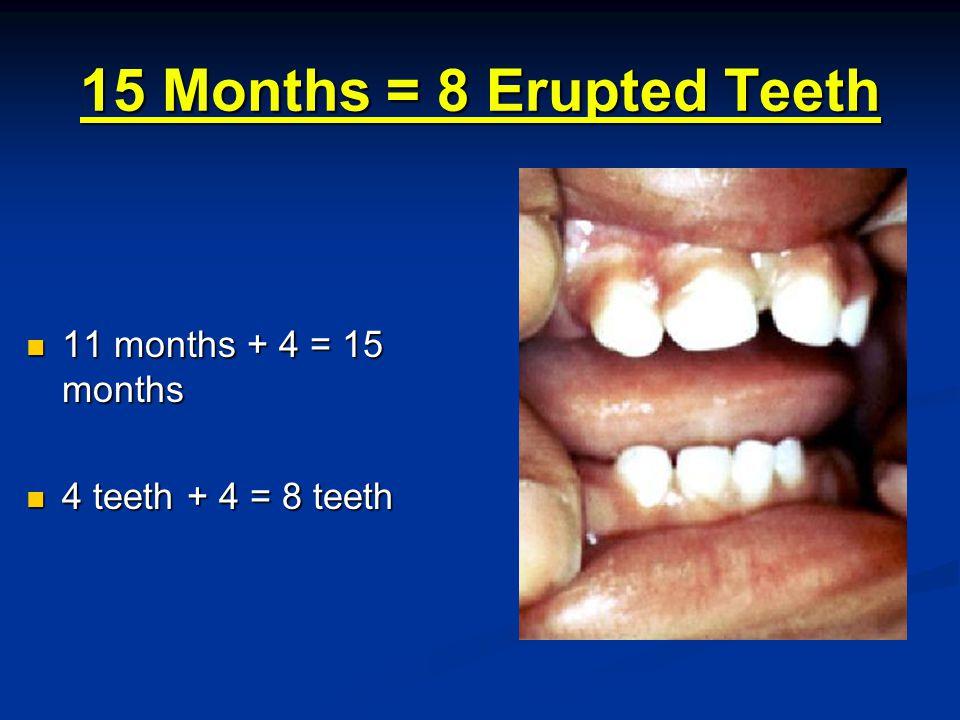 19 Months = 12 Erupted Teeth 15 months + 4 = 19 months 15 months + 4 = 19 months 8 teeth + 4 = 12 teeth 8 teeth + 4 = 12 teeth