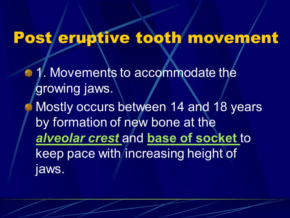 Post eruptive tooth movement 1. Movements to accommodate the growing jaws. alveolar crest Mostly occurs between 14 and 18 years by formation of new bo