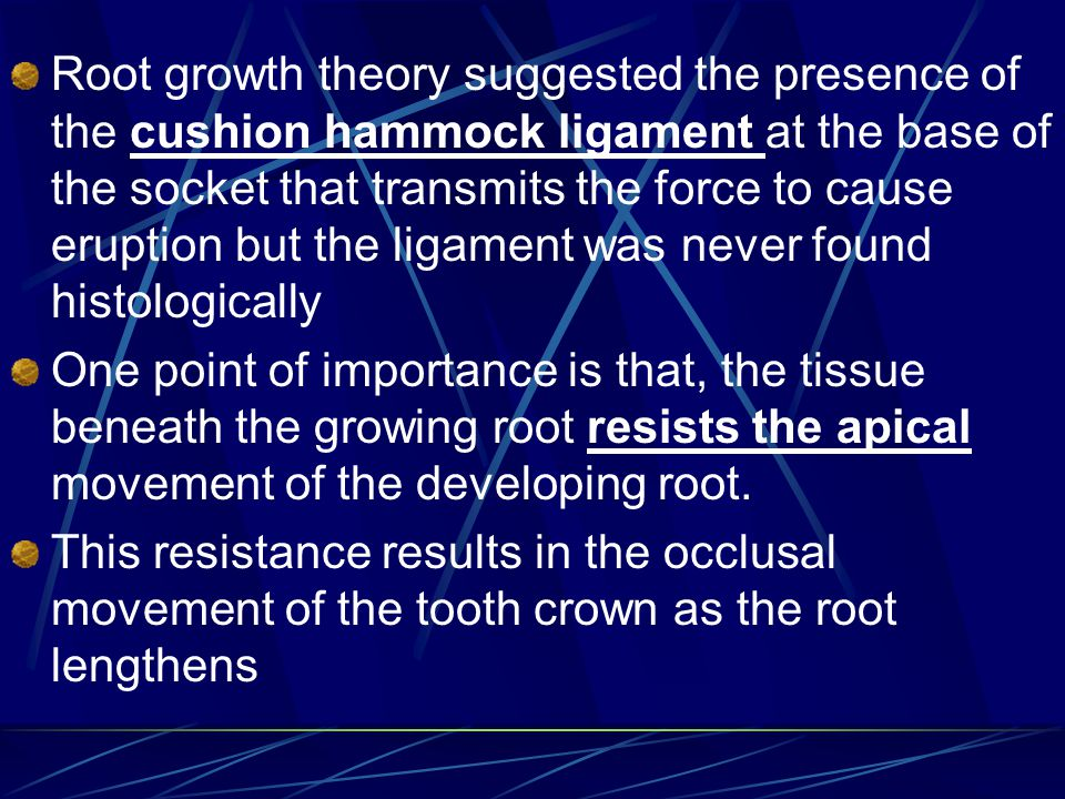 Root growth theory suggested the presence of the cushion hammock ligament at the base of the socket that transmits the force to cause eruption but the