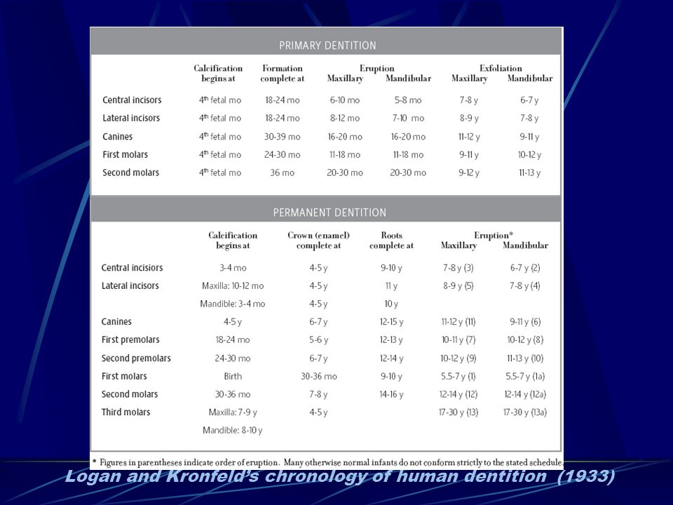 Logan and Kronfelds chronology of human dentition (1933)