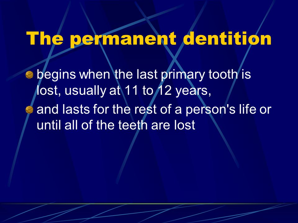 The permanent dentition begins when the last primary tooth is lost, usually at 11 to 12 years, and lasts for the rest of a person's life or until all