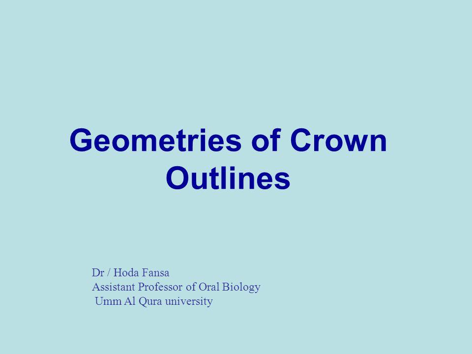 Geometries of Crown Outlines Dr / Hoda Fansa Assistant Professor of Oral Biology Umm Al Qura university