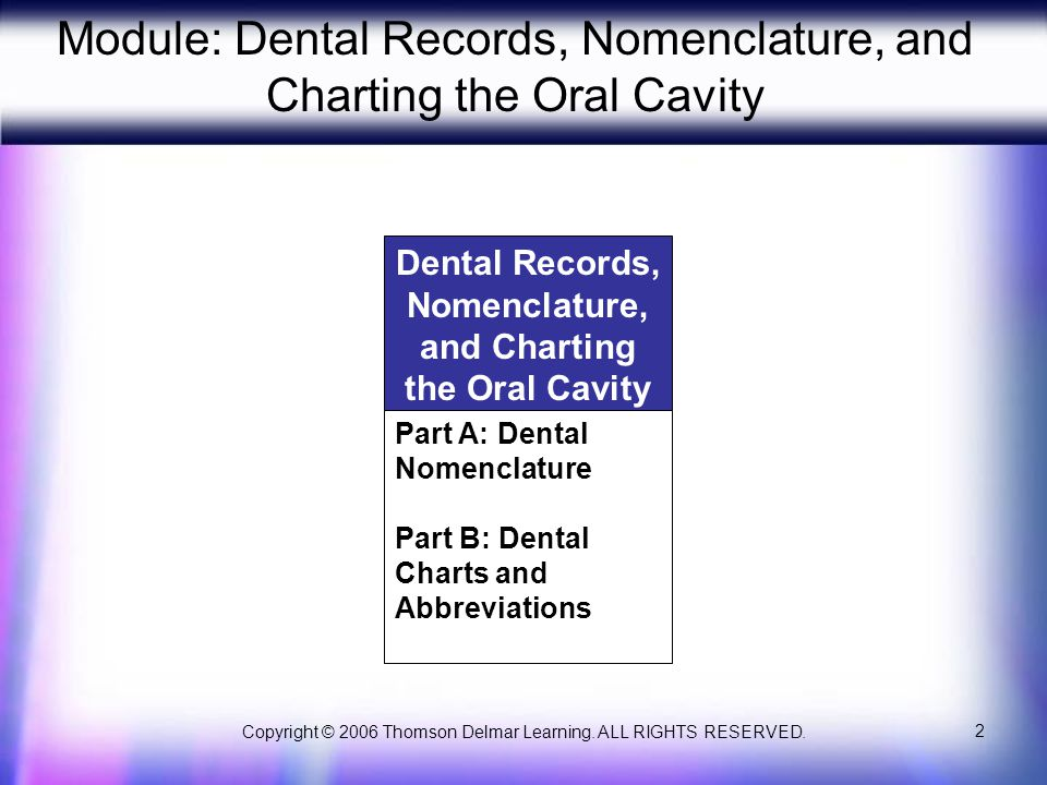 Copyright © 2006 Thomson Delmar Learning. ALL RIGHTS RESERVED. 13 Primary Teeth