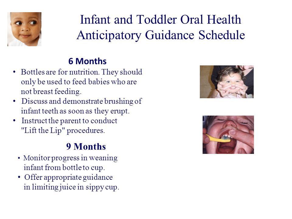 Infant and Toddler Oral Health Anticipatory Guidance Schedule 6 Months Bottles are for nutrition. They should only be used to feed babies who are not