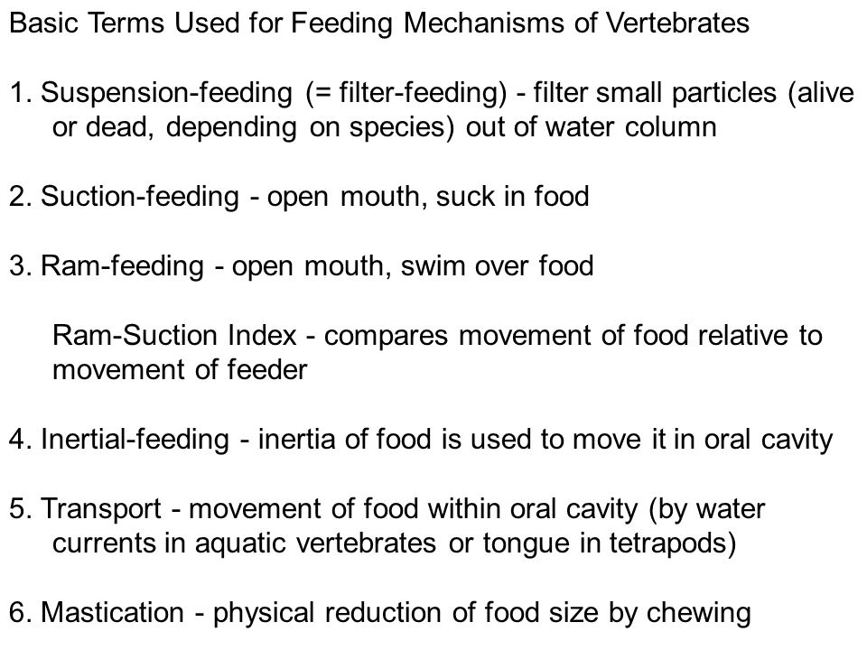 Basic Terms Used for Feeding Mechanisms of Vertebrates 1.