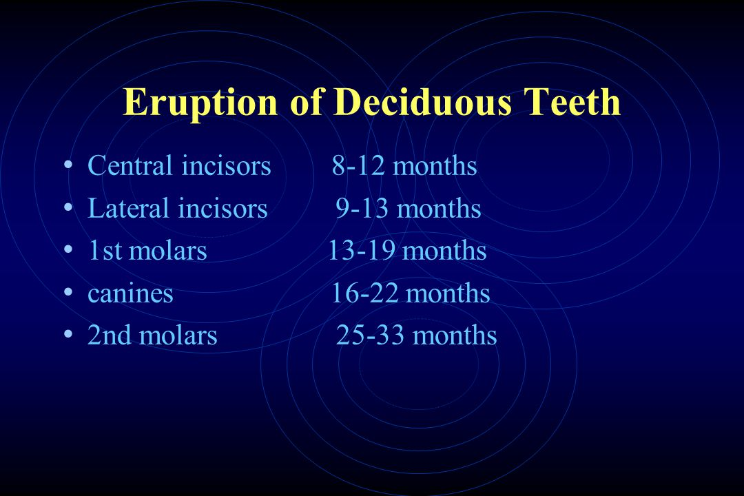 Eruption of Deciduous Teeth Central incisors 8-12 months Lateral incisors 9-13 months 1st molars 13-19 months canines 16-22 months 2nd molars 25-33 months