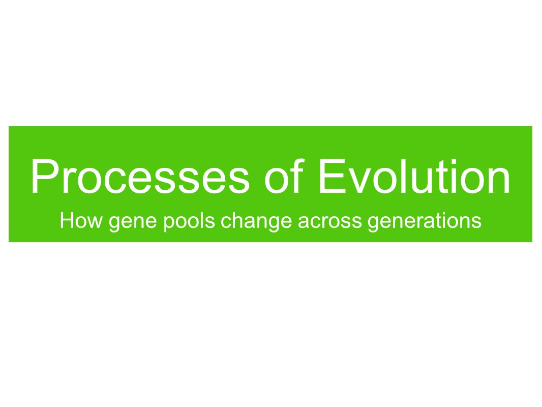 Processes of Evolution How gene pools change across generations
