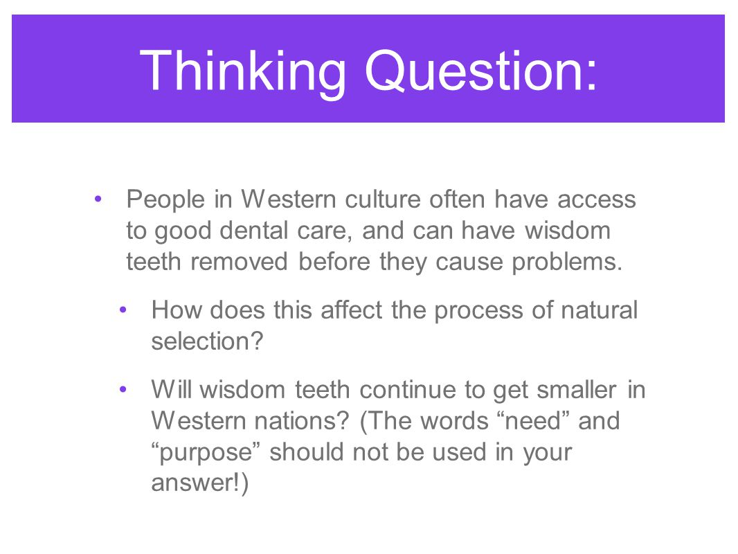 Thinking Question: People in Western culture often have access to good dental care, and can have wisdom teeth removed before they cause problems. How