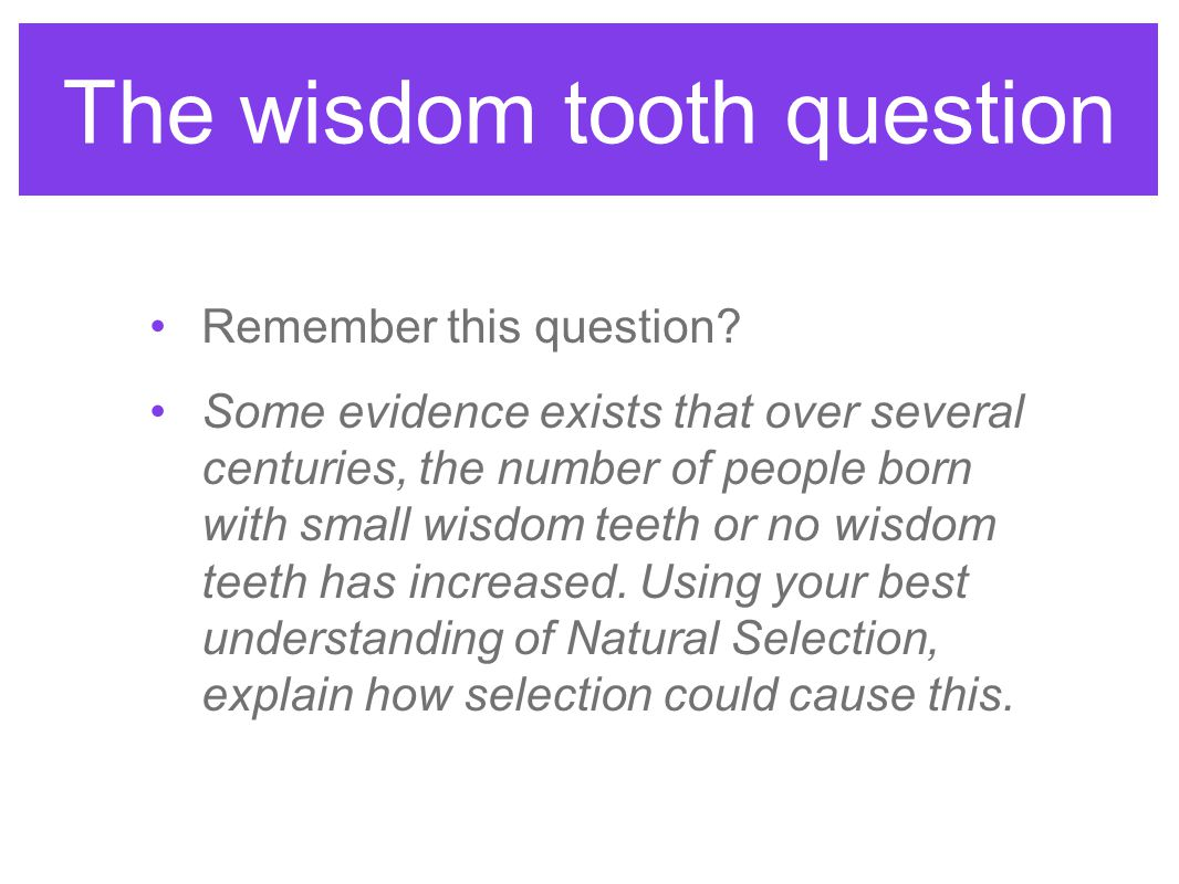 The wisdom tooth question Remember this question? Some evidence exists that over several centuries, the number of people born with small wisdom teeth
