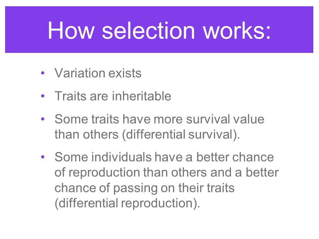 A population bottleneck is genetic drift.