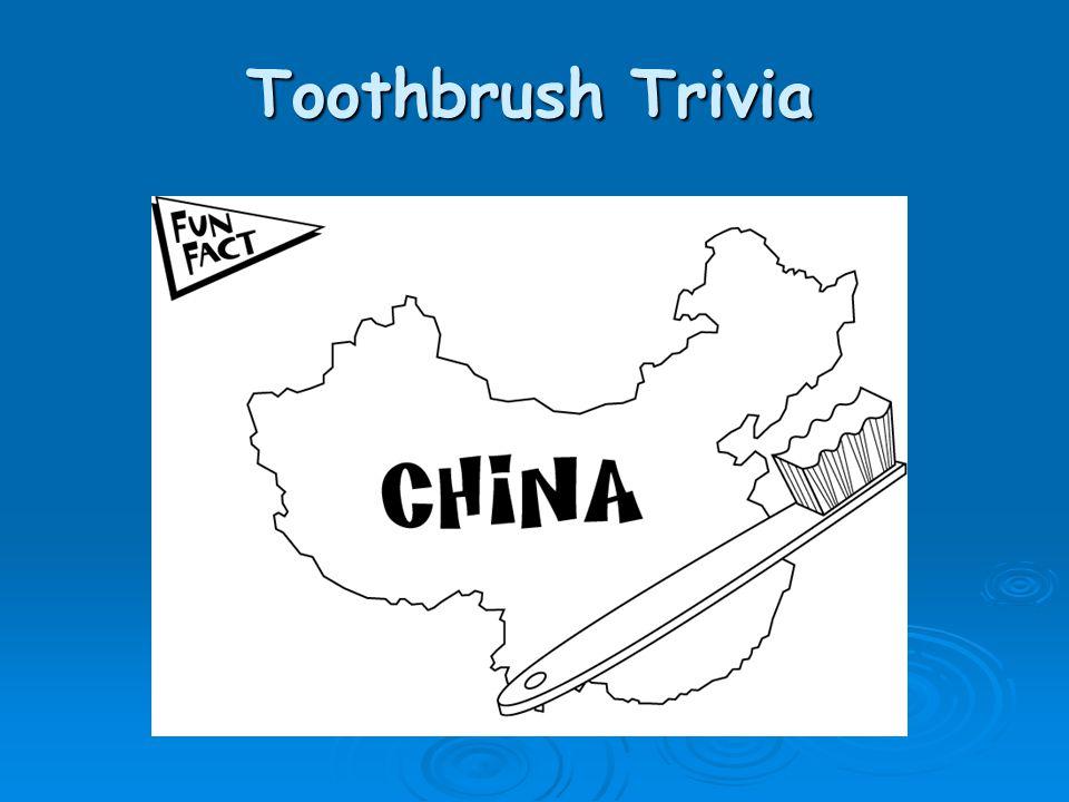 Toothbrush Trivia