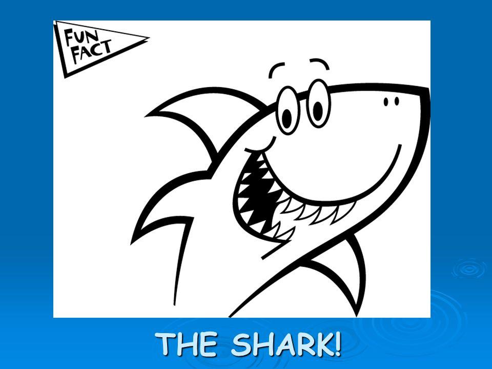 THE SHARK!