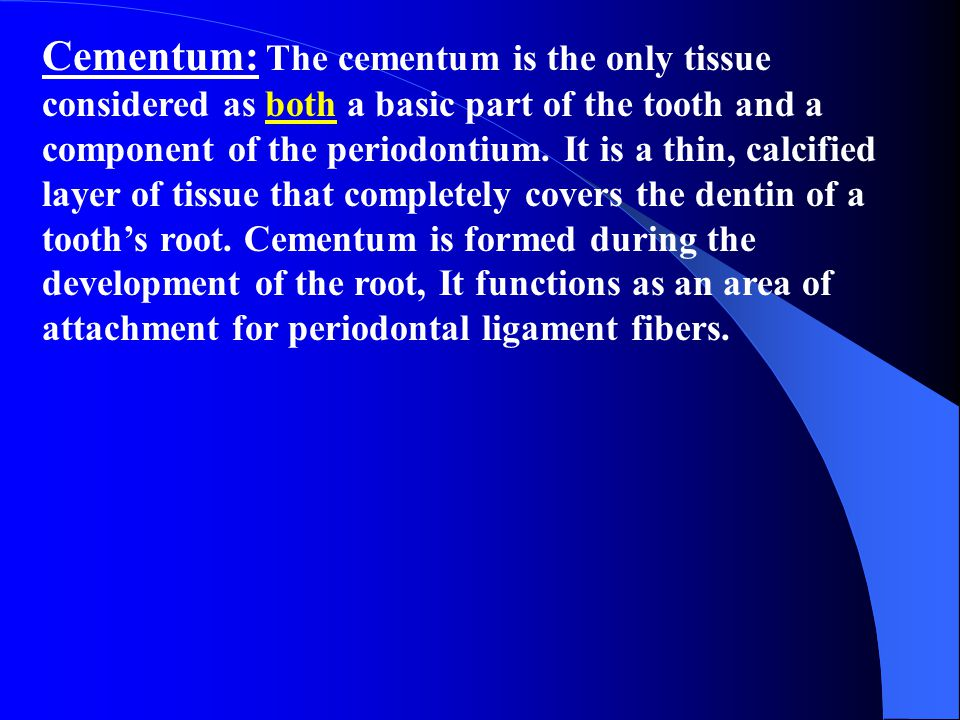 Cementum: The cementum is the only tissue considered as both a basic part of the tooth and a component of the periodontium. It is a thin, calcified la