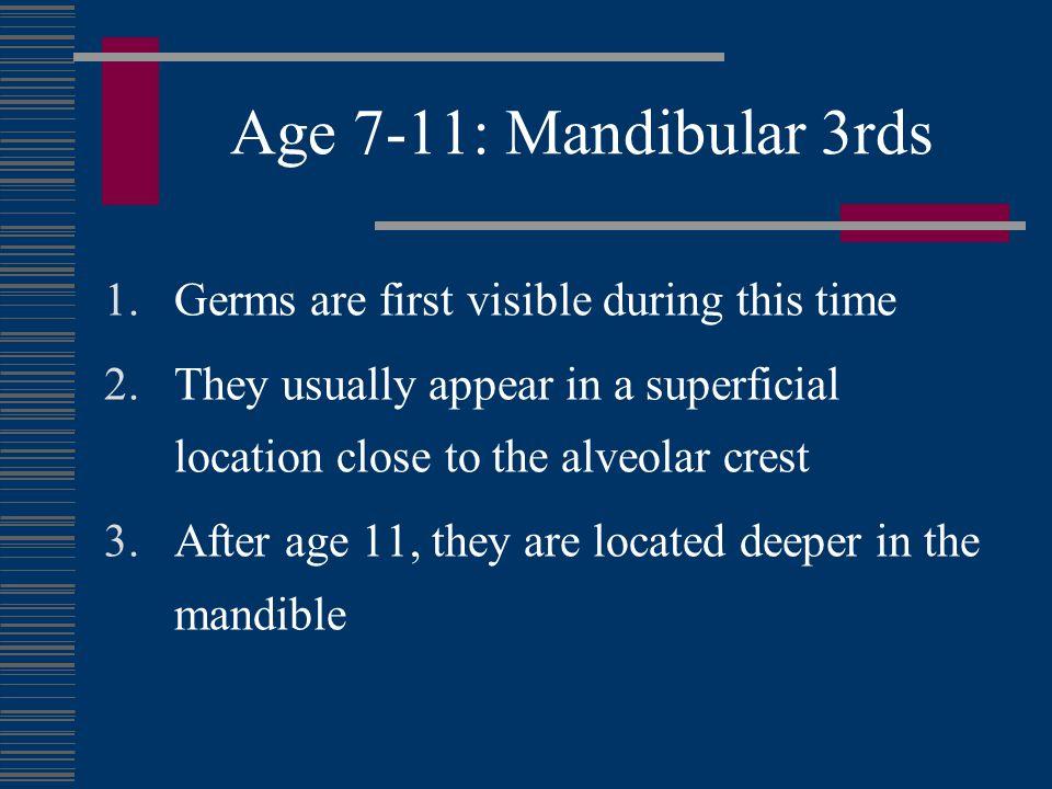 Age 7-11: Mandibular 3rds Very close to ridge crest. Minimal if any bone removal will be needed.