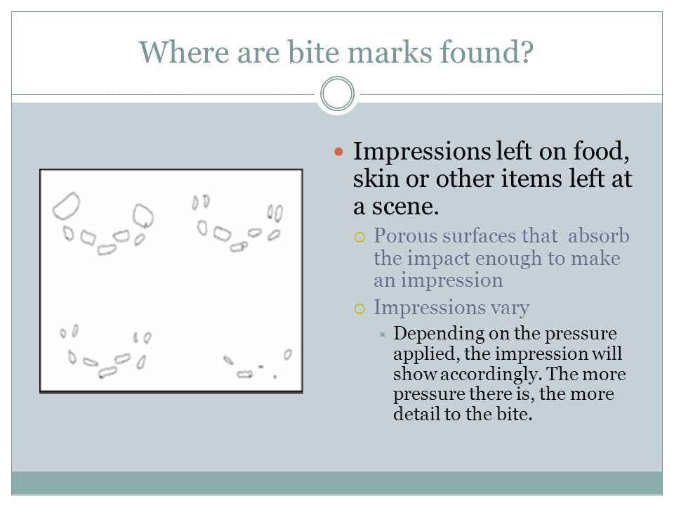 Where are bite marks found? Impressions left on food, skin or other items left at a scene. Porous surfaces that absorb the impact enough to make an im