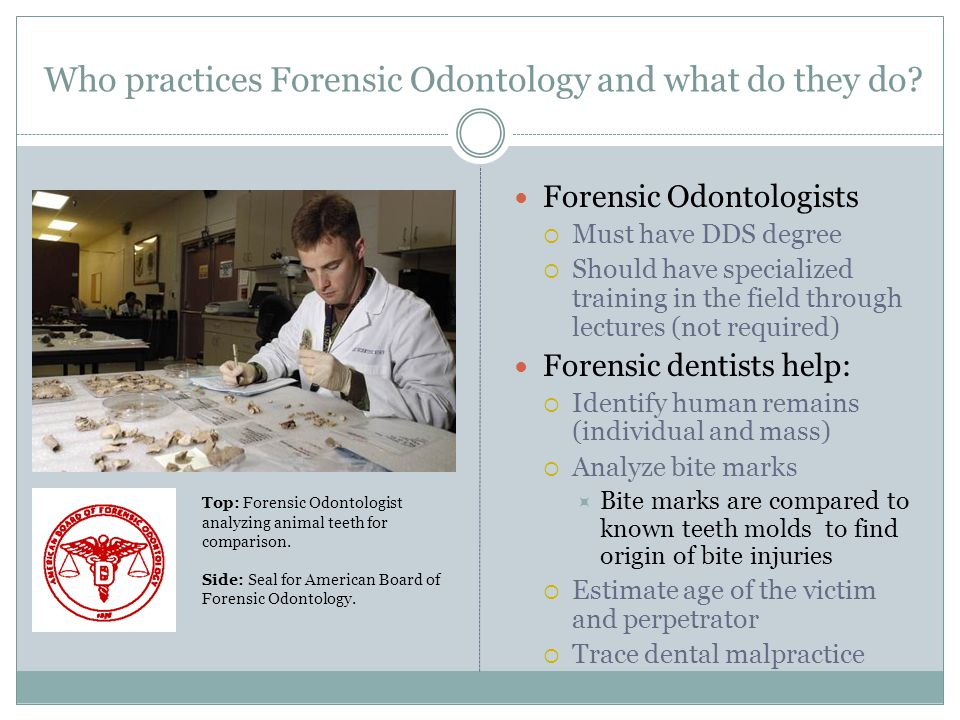 Who practices Forensic Odontology and what do they do? Forensic Odontologists Must have DDS degree Should have specialized training in the field throu