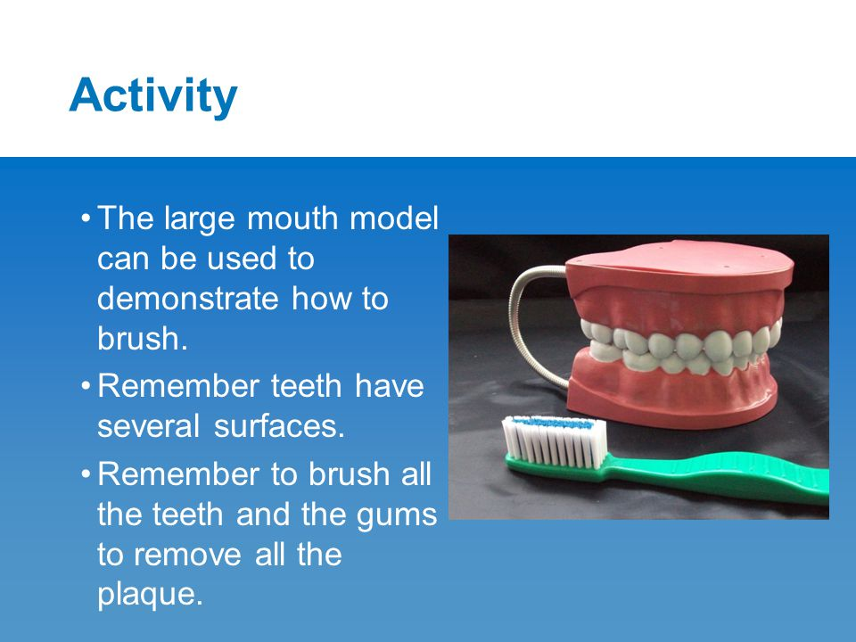 Activity The large mouth model can be used to demonstrate how to brush. Remember teeth have several surfaces. Remember to brush all the teeth and the