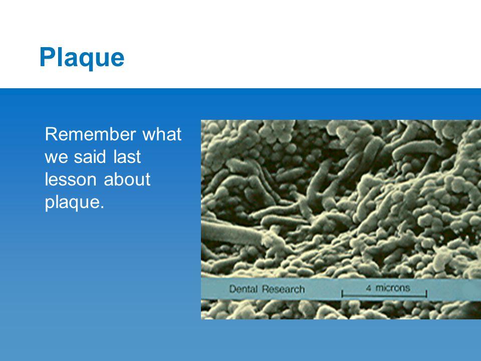 Plaque Remember what we said last lesson about plaque.