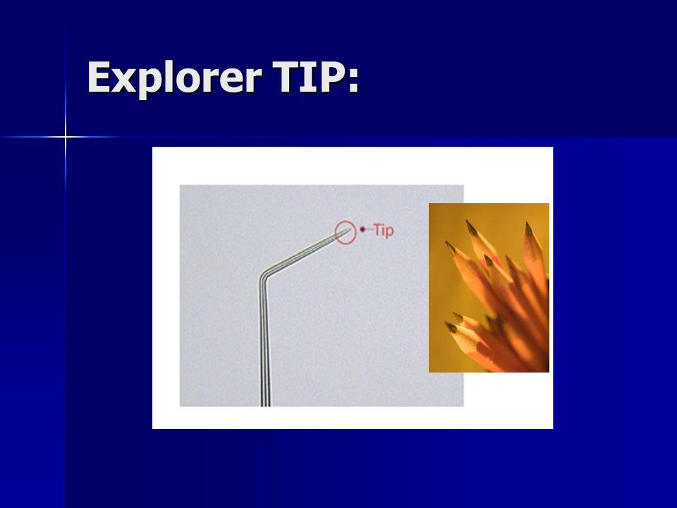 Explorer TIP: