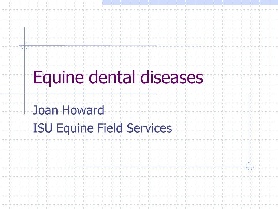 Equine dental diseases Joan Howard ISU Equine Field Services