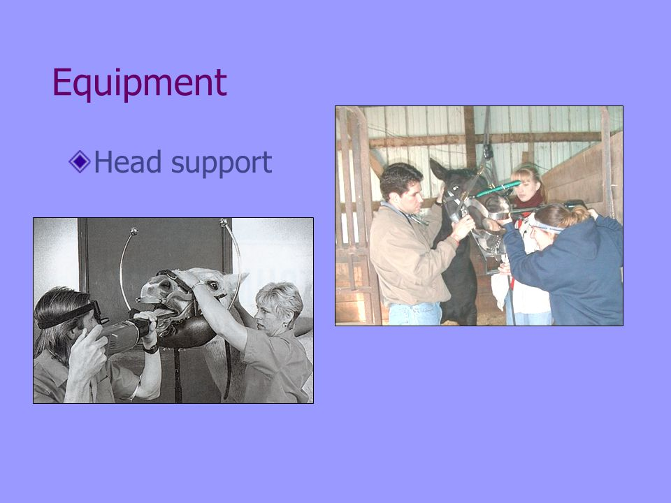 Equipment Head support