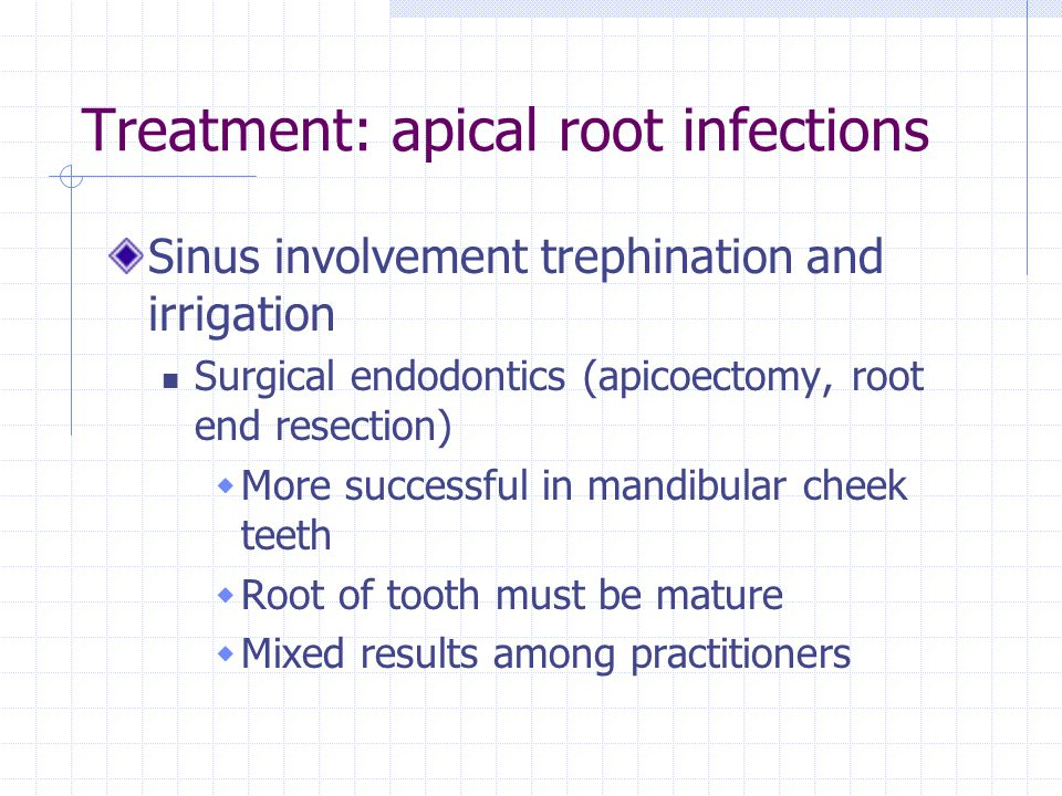Treatment: apical root infections Sinus involvement trephination and irrigation Surgical endodontics (apicoectomy, root end resection) More successful