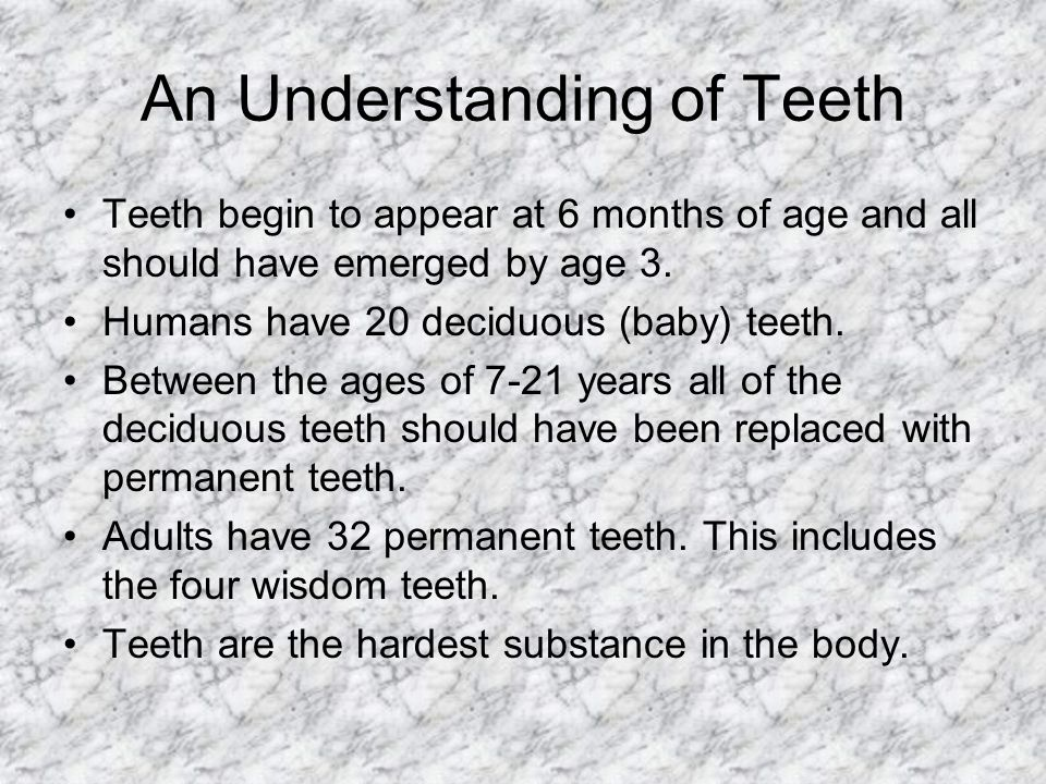 An Understanding of Teeth Teeth begin to appear at 6 months of age and all should have emerged by age 3. Humans have 20 deciduous (baby) teeth. Betwee