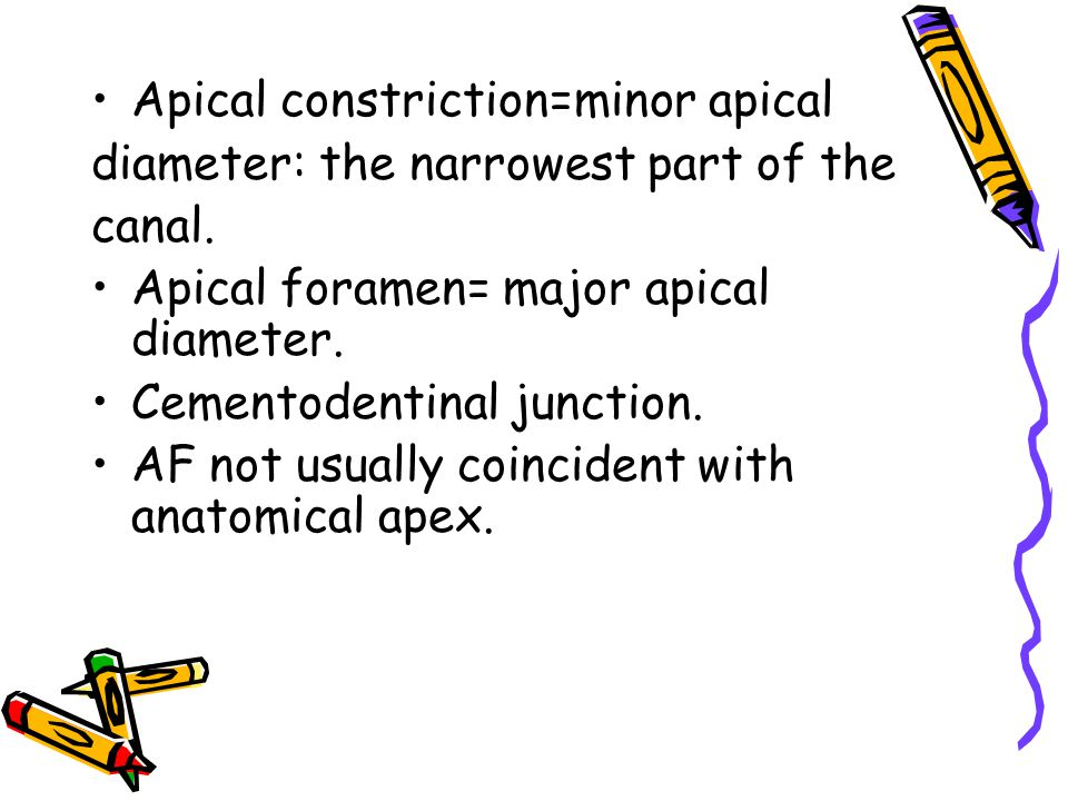 Apical constriction=minor apical diameter: the narrowest part of the canal. Apical foramen= major apical diameter. Cementodentinal junction. AF not us