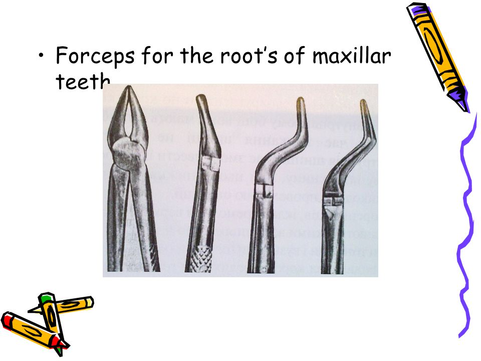Forceps for the roots of maxillar teeth