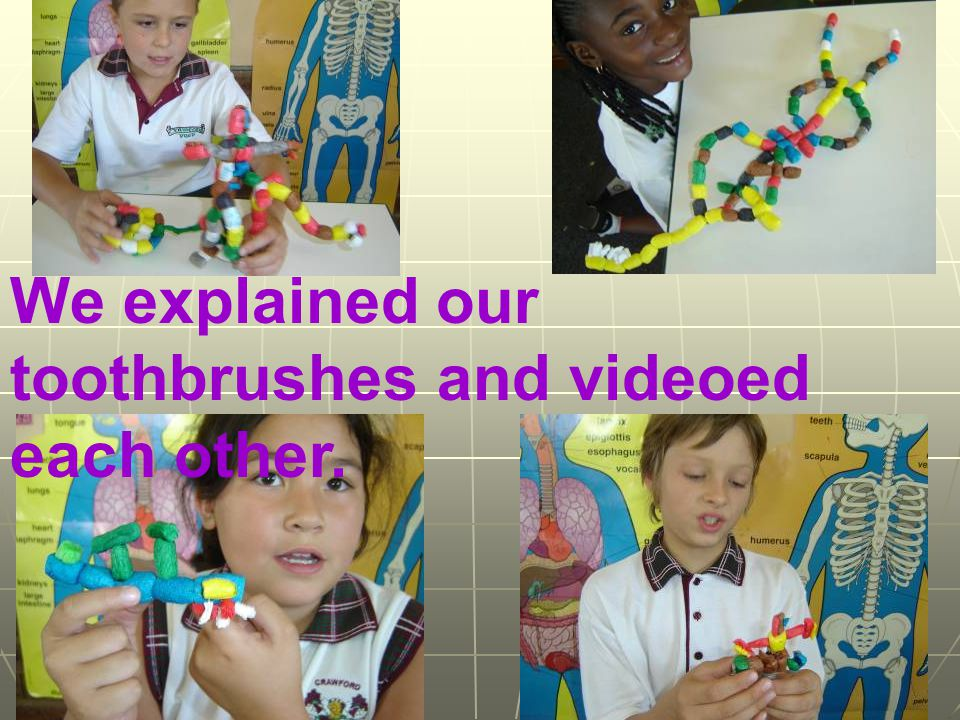We explained our toothbrushes and videoed each other.