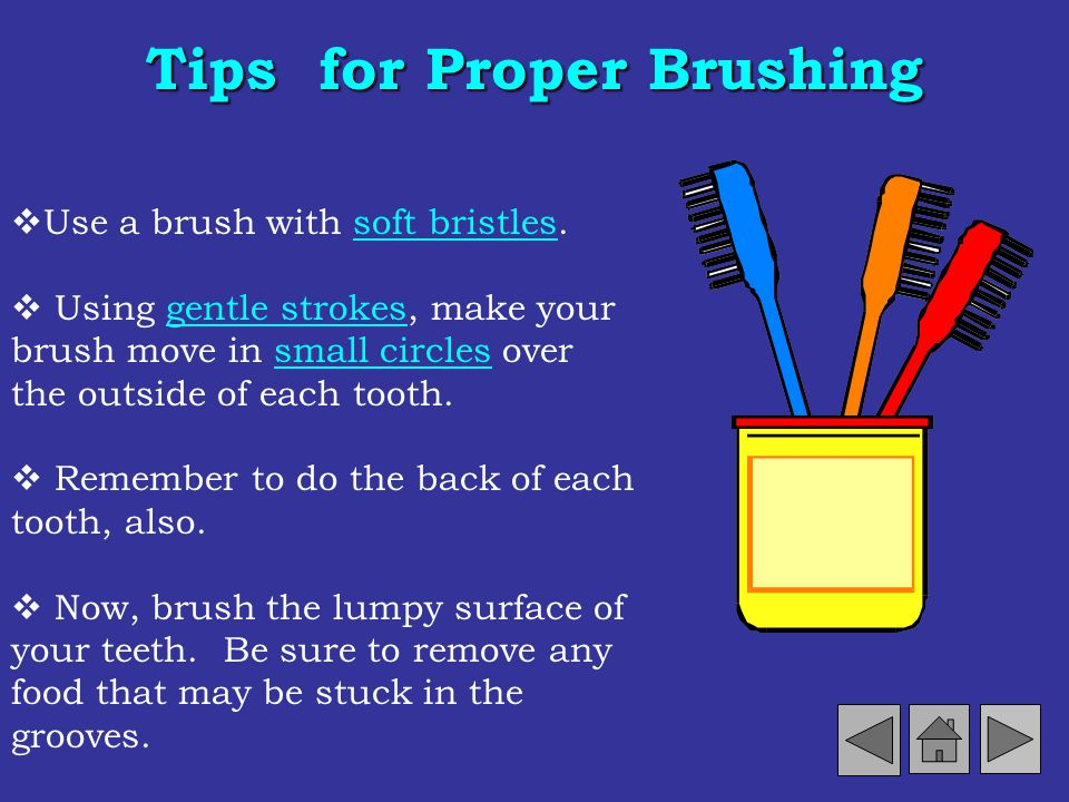 Brushing We should brush our teeth after every meal. But, sometimes thats difficult. So, you should remember to brush at least twice a day. Brushing h