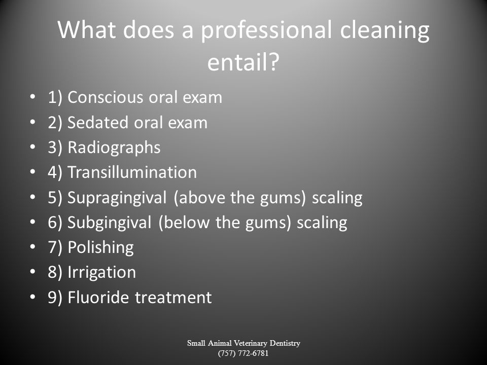What does a professional cleaning entail? 1) Conscious oral exam 2) Sedated oral exam 3) Radiographs 4) Transillumination 5) Supragingival (above the
