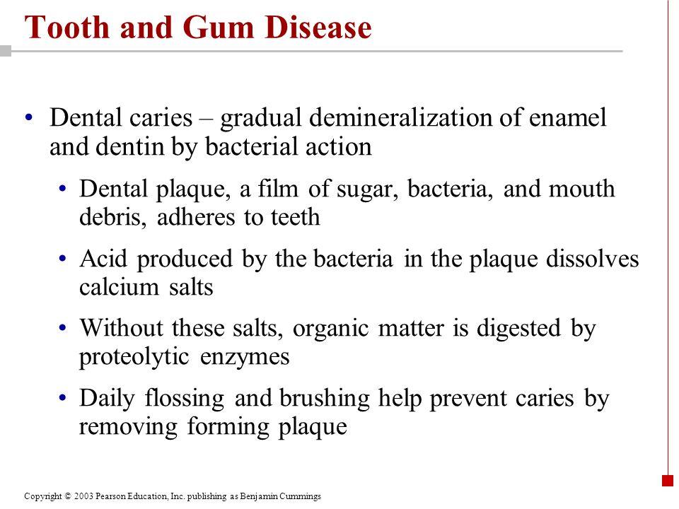 Copyright © 2003 Pearson Education, Inc. publishing as Benjamin Cummings Tooth and Gum Disease Dental caries – gradual demineralization of enamel and