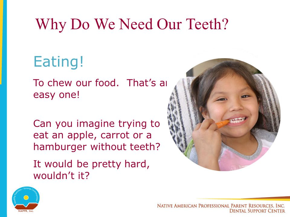 Why Do We Need Our Teeth? Eating! To chew our food. Thats an easy one! Can you imagine trying to eat an apple, carrot or a hamburger without teeth? It