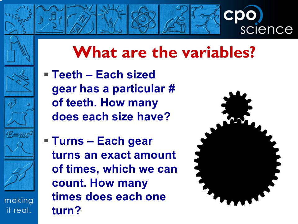 What are the variables? Teeth – Each sized gear has a particular # of teeth. How many does each size have? Turns – Each gear turns an exact amount of