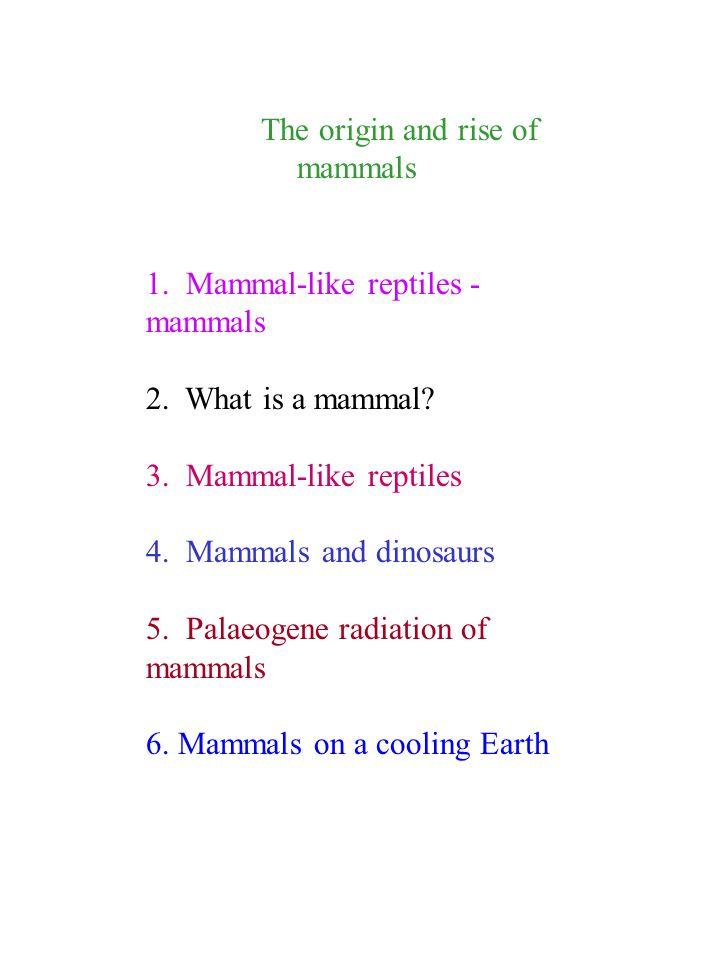 The origin and rise of mammals 1. Mammal-like reptiles - mammals 2. What is a mammal? 3. Mammal-like reptiles 4. Mammals and dinosaurs 5. Palaeogene r