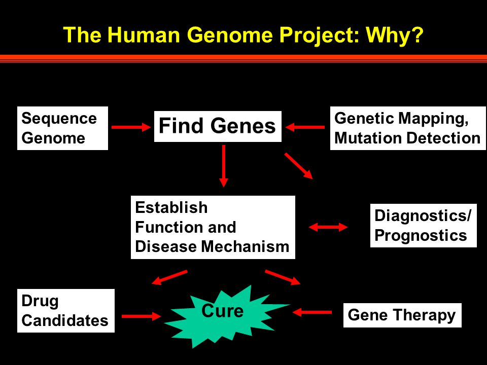 The Human Genome Project: Why.